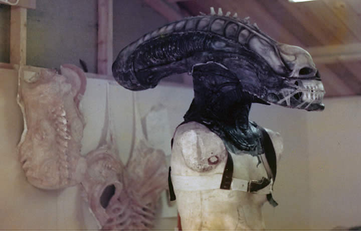 Alien head on manikin : alien 1979 costume  - Germanpascual.Com
