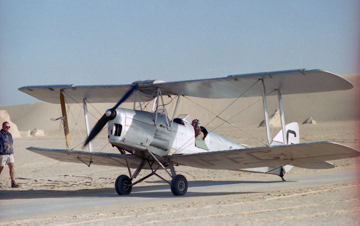 Tiger Moth in the desert