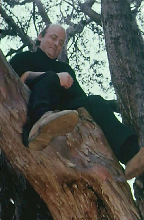 Peter Redgrove up a tree in art school grounds